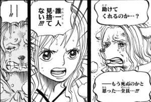 【ワンピース】ワンダはミンク族でかわいい!声優や年齢を紹介!