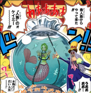 【ワンピース】人魚ケイミーがかわいい!初登場や年齢を紹介!