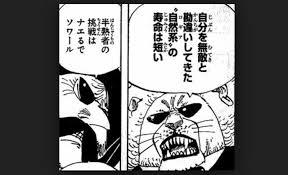 【ワンピース】ぺコムズの悪魔の実や懸賞金は?名言や声優を紹介!