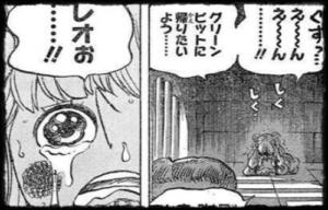 【ワンピース】マンシェリーの能力は?レオとの関係、性格なども解説