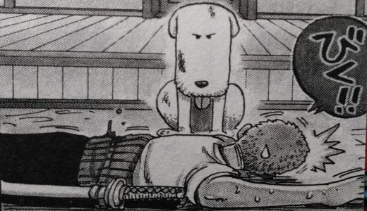 【ワンピース】シュシュのその後や声優も紹介!飼い主やブードルとの関係性も解説