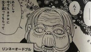 【ハンターハンター】リンネ・オードブルは暗黒大陸からの生存者!?ゾルディック家やネテロとの関係に迫る!