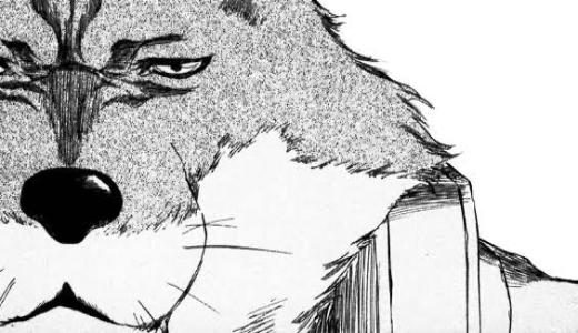 【BLEACH】狛村左陣が弱い?卍解の強さや声優、最後についても解説!